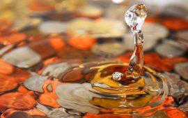 Papel de parede Gota de Água – Delicado