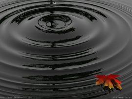 Papel de parede Gota de Água – Natureza