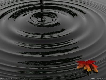 Papel de parede Gota de Água – Natureza para download gratuito. Use no computador pc, mac, macbook, celular, smartphone, iPhone, onde quiser!