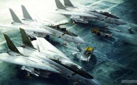 Papel de parede Caça Grumman F-14 Tomcat