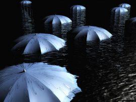 Papel de parede Guarda-chuvas