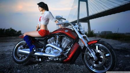 Papel de parede Modelo na Harley Davidson V-Rod para download gratuito. Use no computador pc, mac, macbook, celular, smartphone, iPhone, onde quiser!