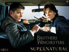 Papel de parede Irmãos Winchesters