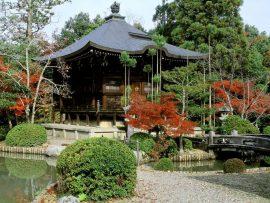 Papel de parede Japão – Kioto