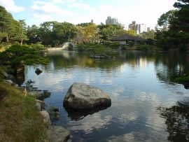 Papel de parede Jardim com lago