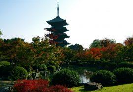 Papel de parede Jardim de Kyoto