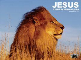 Papel de parede Jesus – leão da tribo de Judá