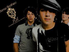 Papel de parede Jonas Brothers – Jonas