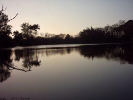 Papel de parede Lago Dourado