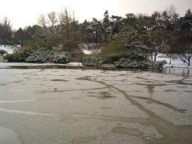 Papel de parede Lago gelado