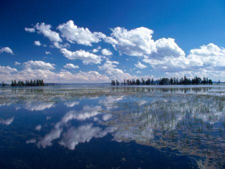Papel de parede Lago Yellowstone para download gratuito. Use no computador pc, mac, macbook, celular, smartphone, iPhone, onde quiser!
