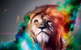 Papel de parede Leão Colorido