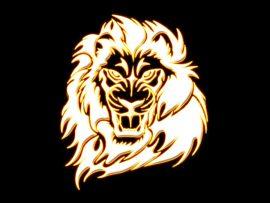 Papel de parede Leão dourado