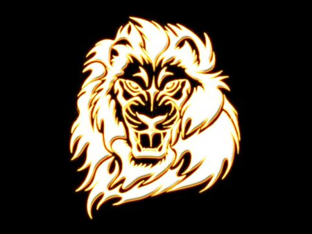Papel de parede Leão dourado para download gratuito. Use no computador pc, mac, macbook, celular, smartphone, iPhone, onde quiser!