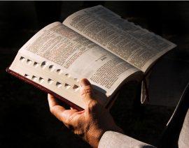 Papel de parede Lendo a Bíblia