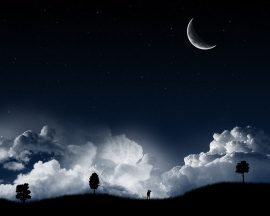 Papel de parede Liberdade Noturna