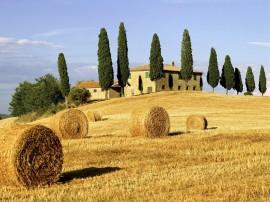 Papel de parede Linda Toscana na Itália