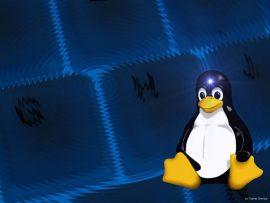 Papel de parede Linux Background pingüim