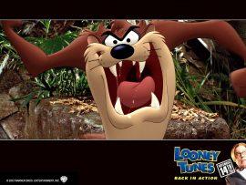 Papel de parede Looney Tunes – Taz