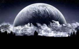 Papel de parede Lua Escura