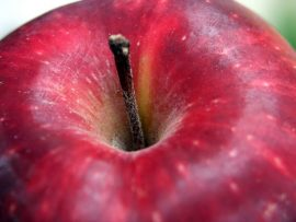 Papel de parede Maçã – Fruta