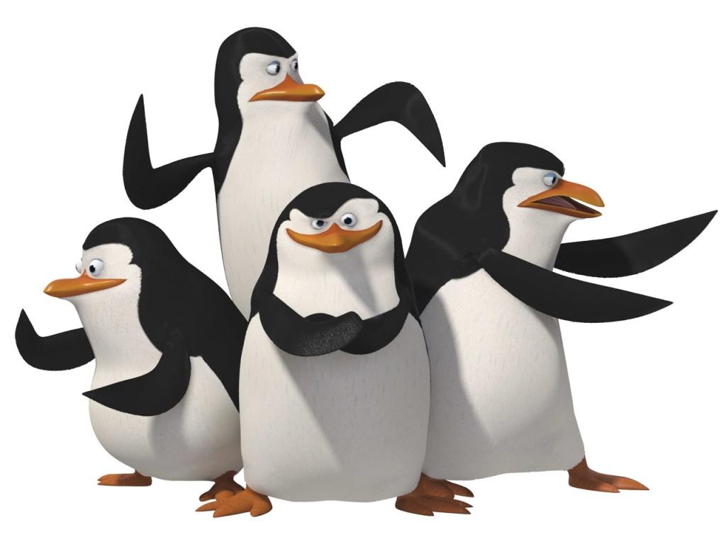 Papel de parede Pinguins Madagascar para download gratuito. Use no computador pc, mac, macbook, celular, smartphone, iPhone, onde quiser!
