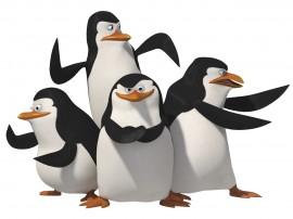 Papel de parede Pinguins Madagascar