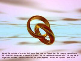 Papel de parede Marcos 10:6-9