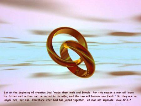 Papel de parede Marcos 10:6-9 para download gratuito. Use no computador pc, mac, macbook, celular, smartphone, iPhone, onde quiser!