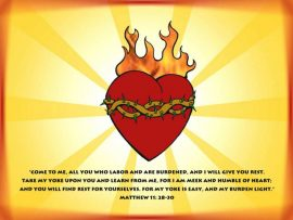 Papel de parede Mateus 11 28:30