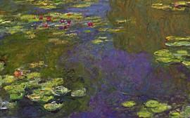 Papel de parede Monet – Ninféias