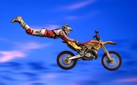 Papel de parede Moto Freestyle
