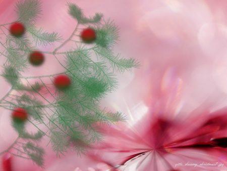 Papel de parede Natal – Enevoado para download gratuito. Use no computador pc, mac, macbook, celular, smartphone, iPhone, onde quiser!