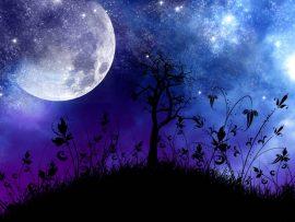 Papel de parede Noite – Como Lenda