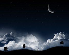 Papel de parede Noite – Enluarada