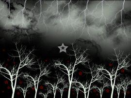 Papel de parede Noite – Estrelas