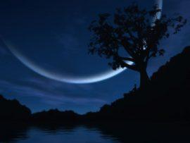 Papel de parede Noite – Lua Incrível
