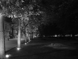Papel de parede Noite – Parque