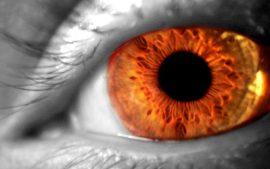 Papel de parede Olhos coloridos