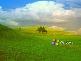 Papel de parede Paisagem Windows