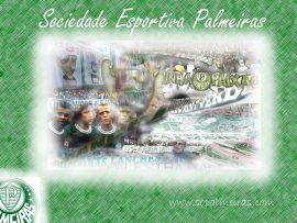 Papel de parede Palmeiras #2