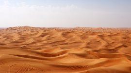 Papel de parede As Ondas de Areia do Deserto