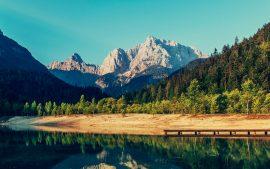 Papel de parede Montanhas e árvores