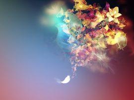 Papel de parede Pássaros – Imaginário