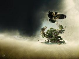 Papel de parede Pássaros – Terra Fantástica