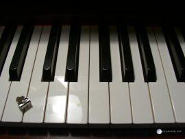 Papel de parede Piano