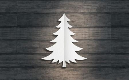 Papel de parede Pinheiro Branco para download gratuito. Use no computador pc, mac, macbook, celular, smartphone, iPhone, onde quiser!