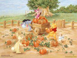 Papel de parede Pooh – Colhendo Abóboras