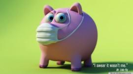 Papel de parede Porquinho Com Máscara(Juro Que Não Fui Eu)