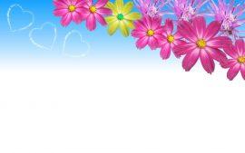 Papel de parede Primavera – Bonito